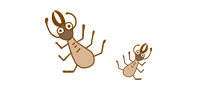title_ant